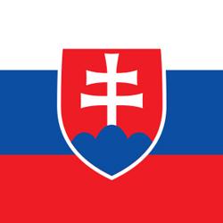 Self-Test Slovak (DSMV)